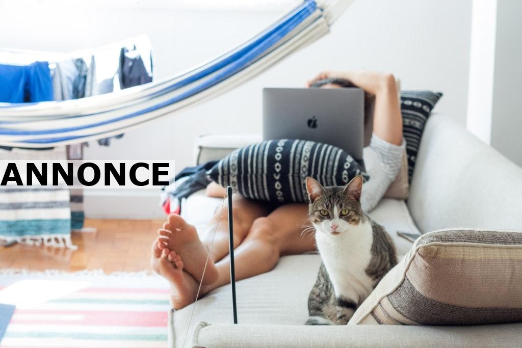 Din sofa har stor betydning for indretningen i din stue
